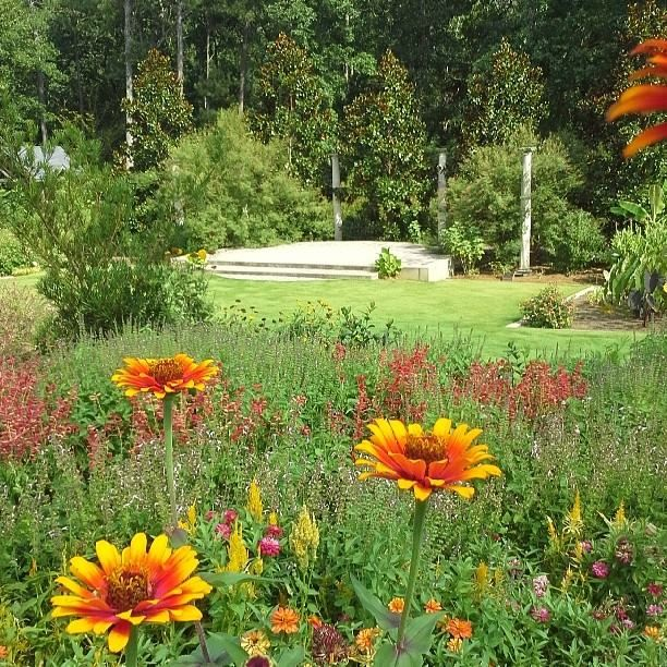 Athens Botanical Gardens Inspired By The Gardens Pinterest Gardens Botanical Gardens And