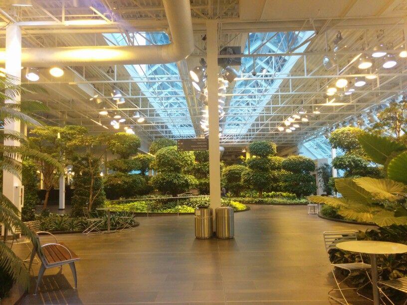 Indoor plants st calgary mall Indoor outdoor, Indoor