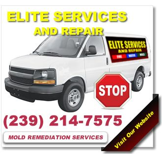 Mold Remediation Fort Myers Tel 239 214 7575 Looking For The Premier Experts In Mold Remediation Fort Myers H Mold Remediation How To Clean Carpet Repair
