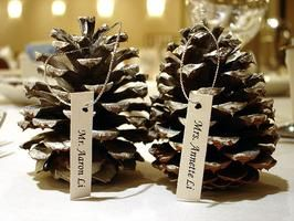 from How to Decorate a Wedding  with Pinecones  by Sara Gilmore, eHow U.K.