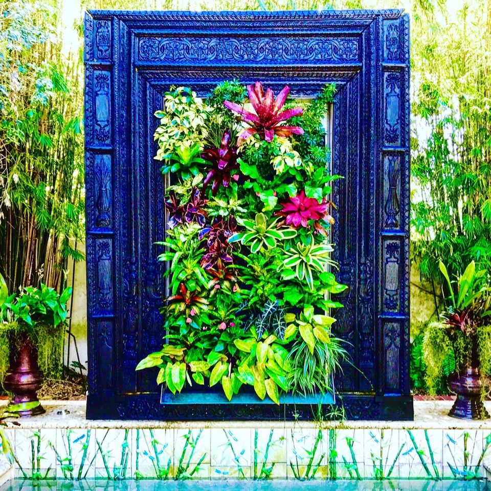 #biophilicdesign #biophilia #greenwall #livingwall #plants