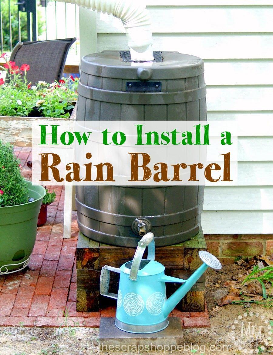 How to Install a Rain Barrel Rain barrel, Water barrel
