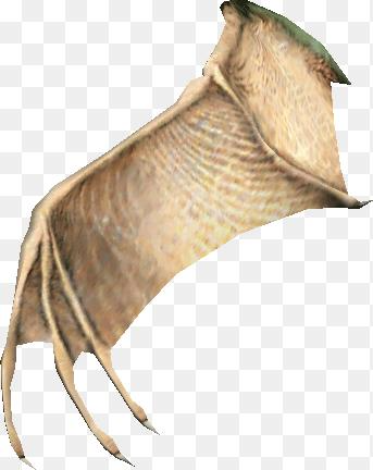Bat Wing Png A Gackle Bat Wing Swg Wiki Fandom Powered By Wikia 343 432 Png Download Free Transparent Background Bat Wing Png Wings Png Bat Wings Gackle