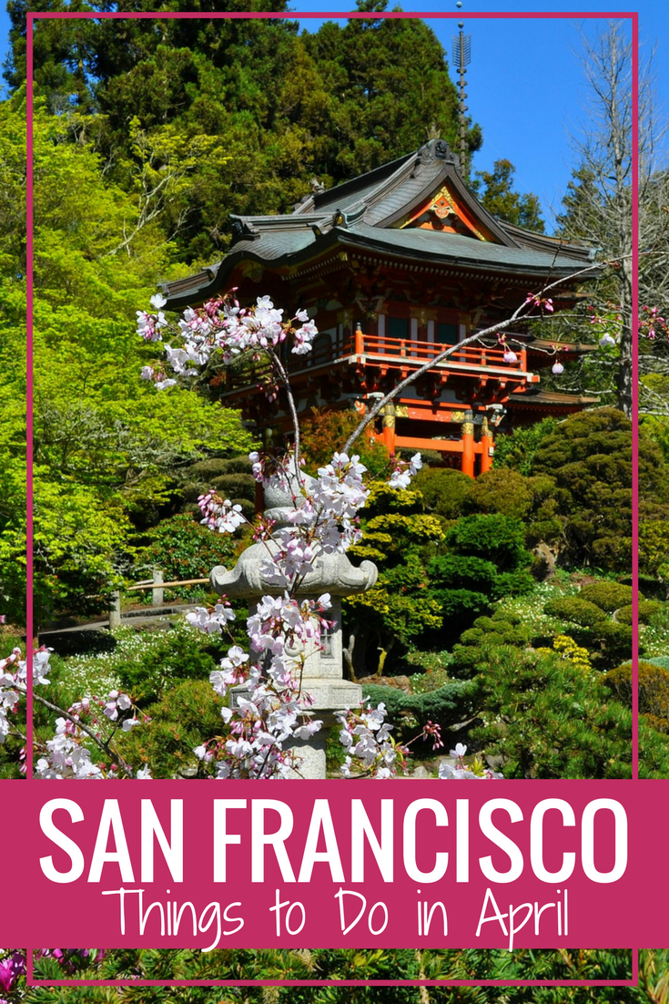San Francisco In April Top Things To Do This Month Tea Garden Weekend In San Francisco Japanese Garden
