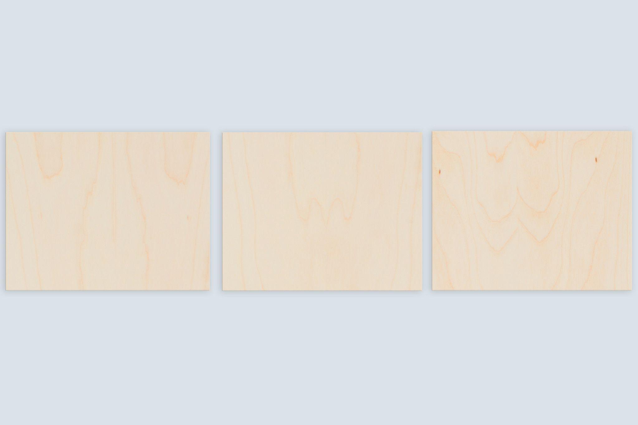 The Landscape Split Panel (30x8)