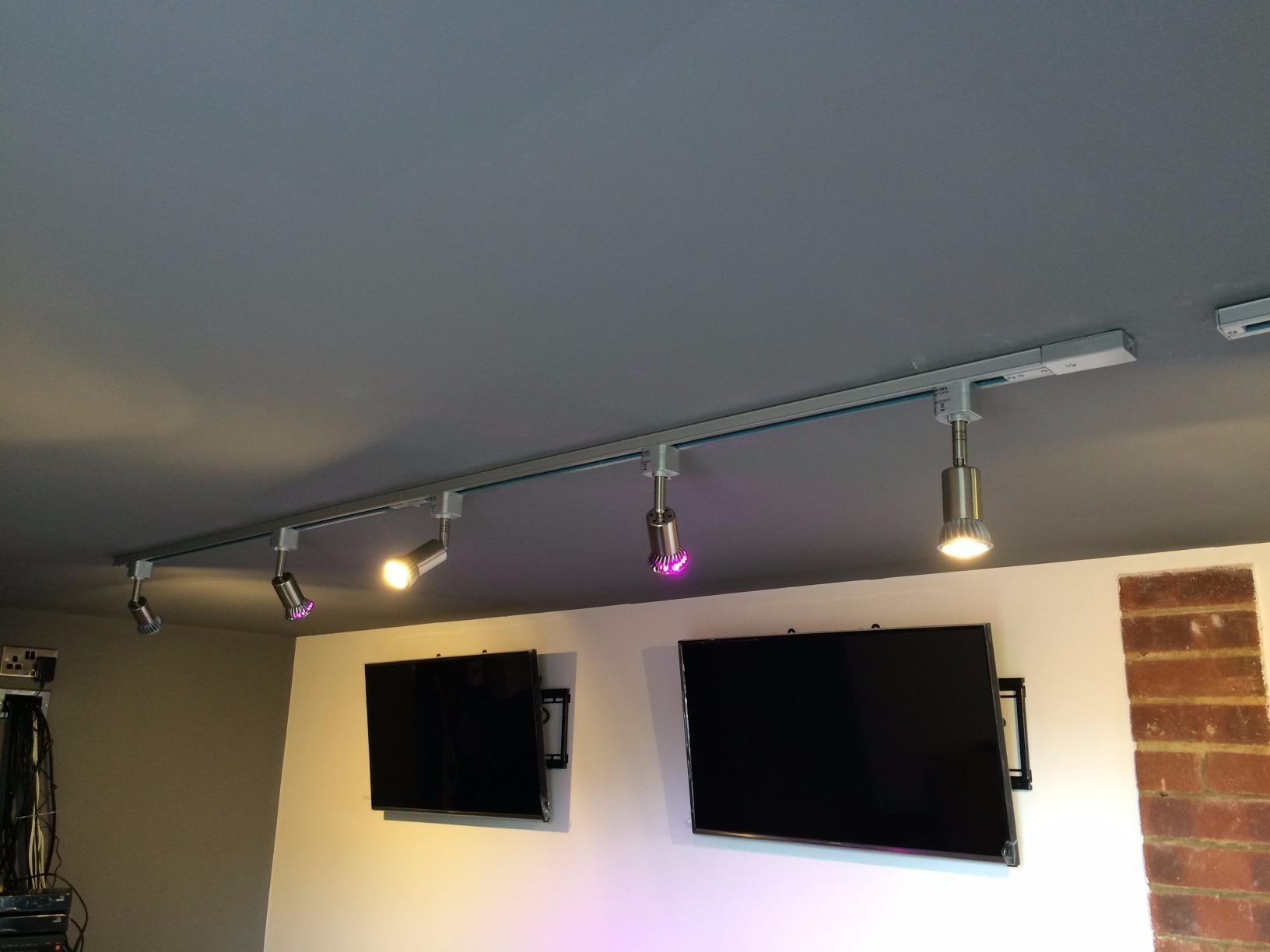 Gu10 Led Light Bulbs 6w 2700k Warm White Romantic Glow 500lm 50w Halogen Spotlights Equivalent 1 Year Payback Tim Track Lighting Spotlight Bulbs Downlights