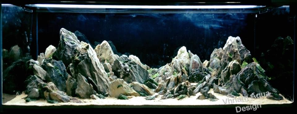 6800 Gambar Design Aquarium Hardscape Paling Keren Untuk Di Contoh