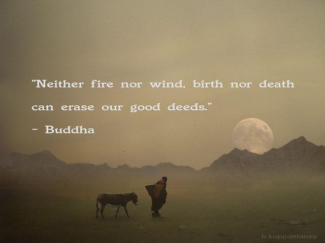 Buddhist Quotes On Death Best Buddha Quote 93  Buddha Quote Buddha And Birth