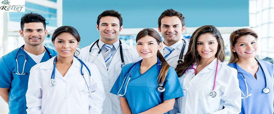 The Veterinary Relief Company provides best relief team