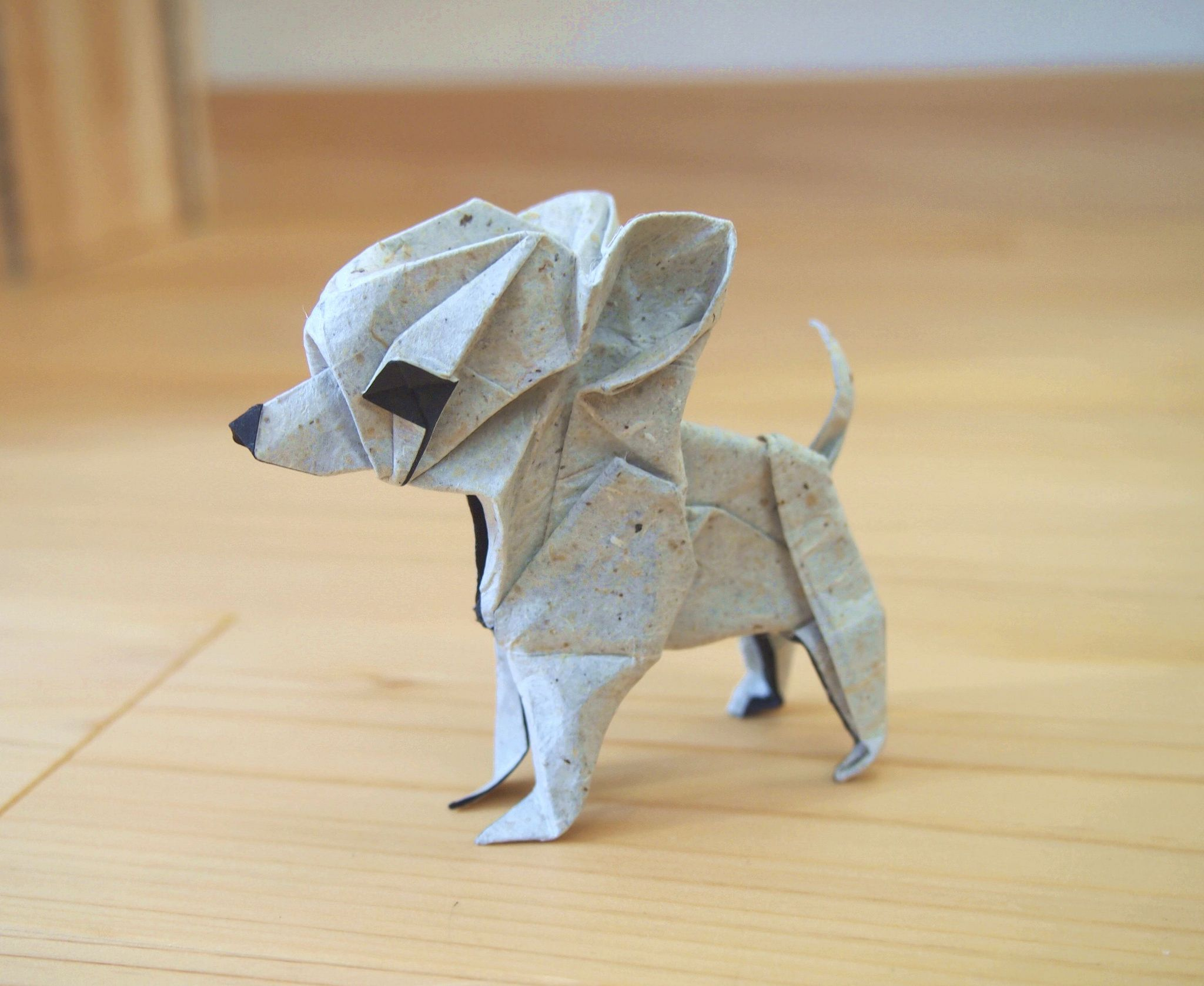 Origami Chihuahua Pinterest Animals Parrotdiagram By Barth Dunkan Ecorigami Designed And Folded Hiroaki Kobayashi Paper Crafts Art
