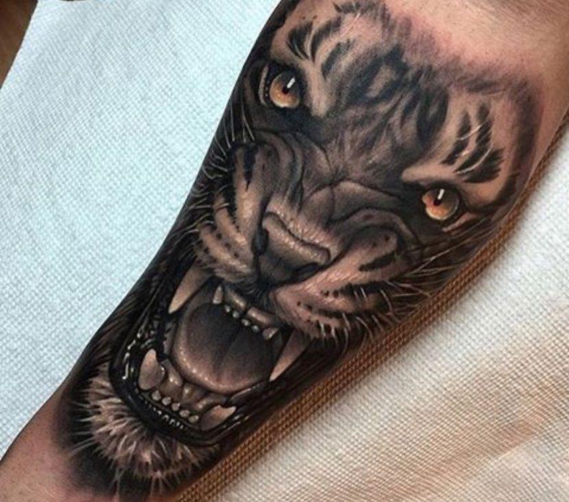 Tatuajes De Leones En El Antebrazo Diseno Del Tatuaje Del Tigre
