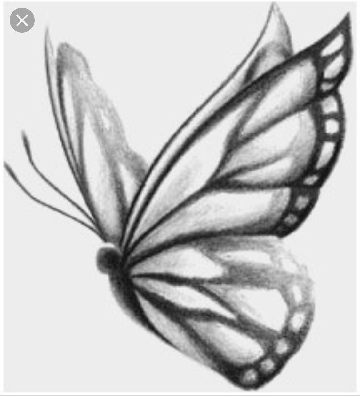 Pin De Olive Sage En Selective Inspiration Classic Mariposas Dibujos A Lapiz Dibujos De Mariposas Mariposas A Lapiz