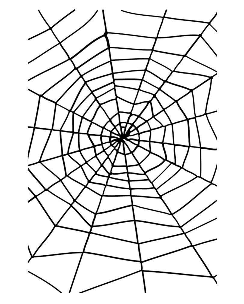 spinnennetz mit spinne als party dekoration für halloween
