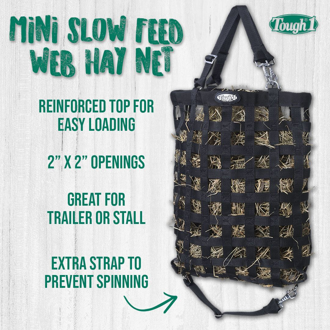 Just For Your Minis Slow Feed Web Hay Net 1 Webbing With Small
