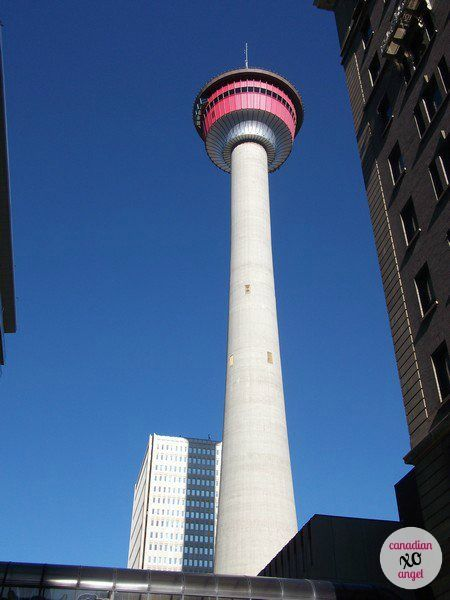 The Calgary Tower Experience The World At Your Feet Literally