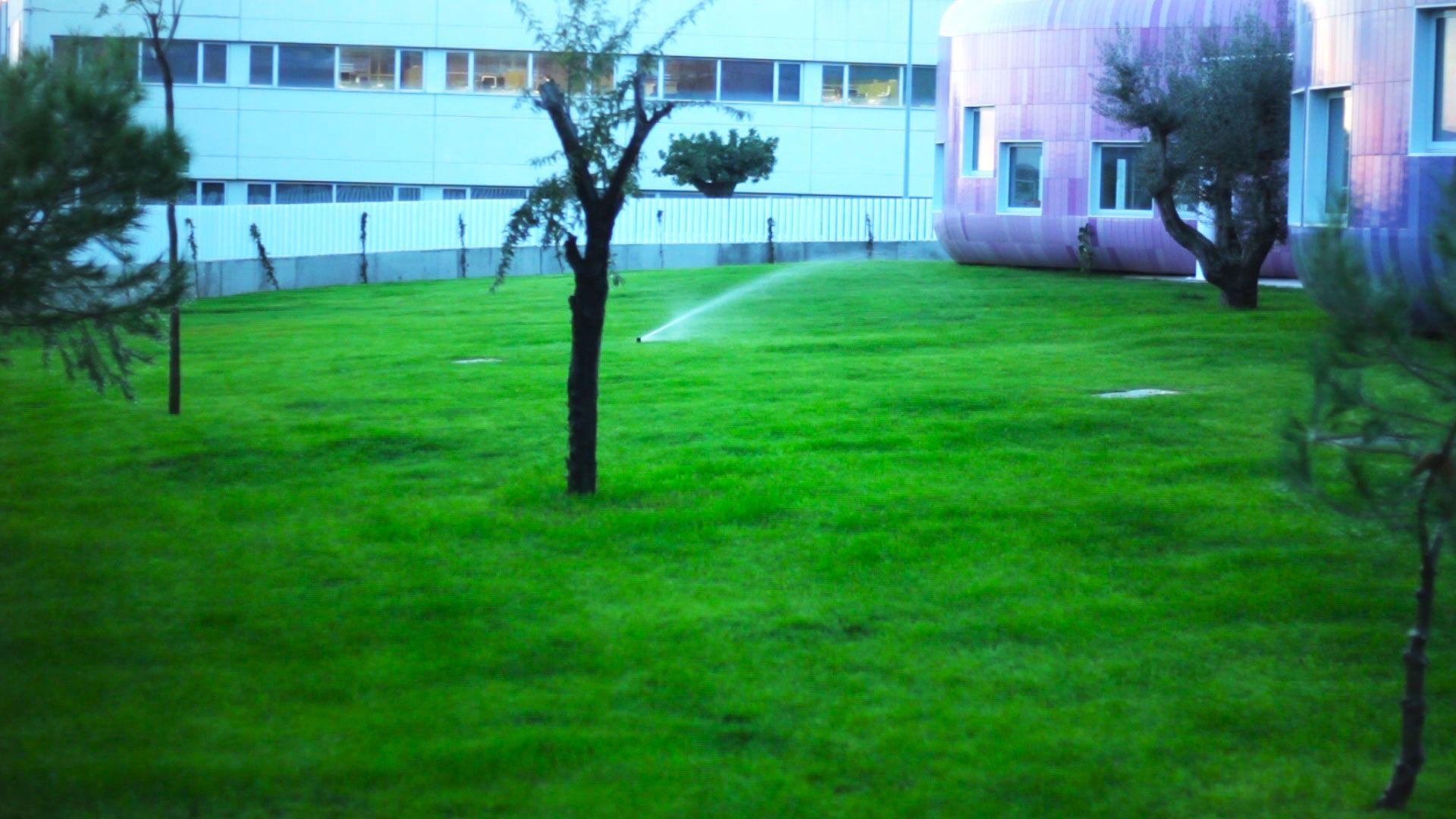 FIICV #guarderia #videoparaempresa #producción #niños