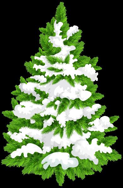 Snowy Pine Tree Png Clip Art Image Christmas Tree Clipart Clip Art Tree Illustration