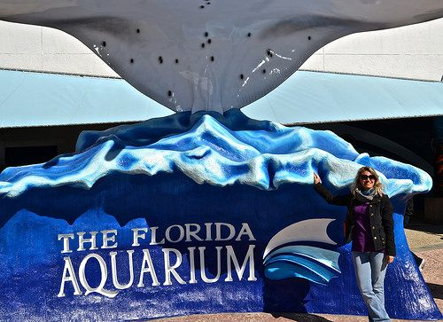 The Florida Aquarium – Afternoon for Kids http://travelexperta.com/2015/03/florida-aquarium-afternoon-kids.html