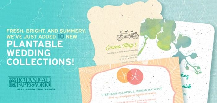 plantable wedding invitations - Plantable Wedding Invitations
