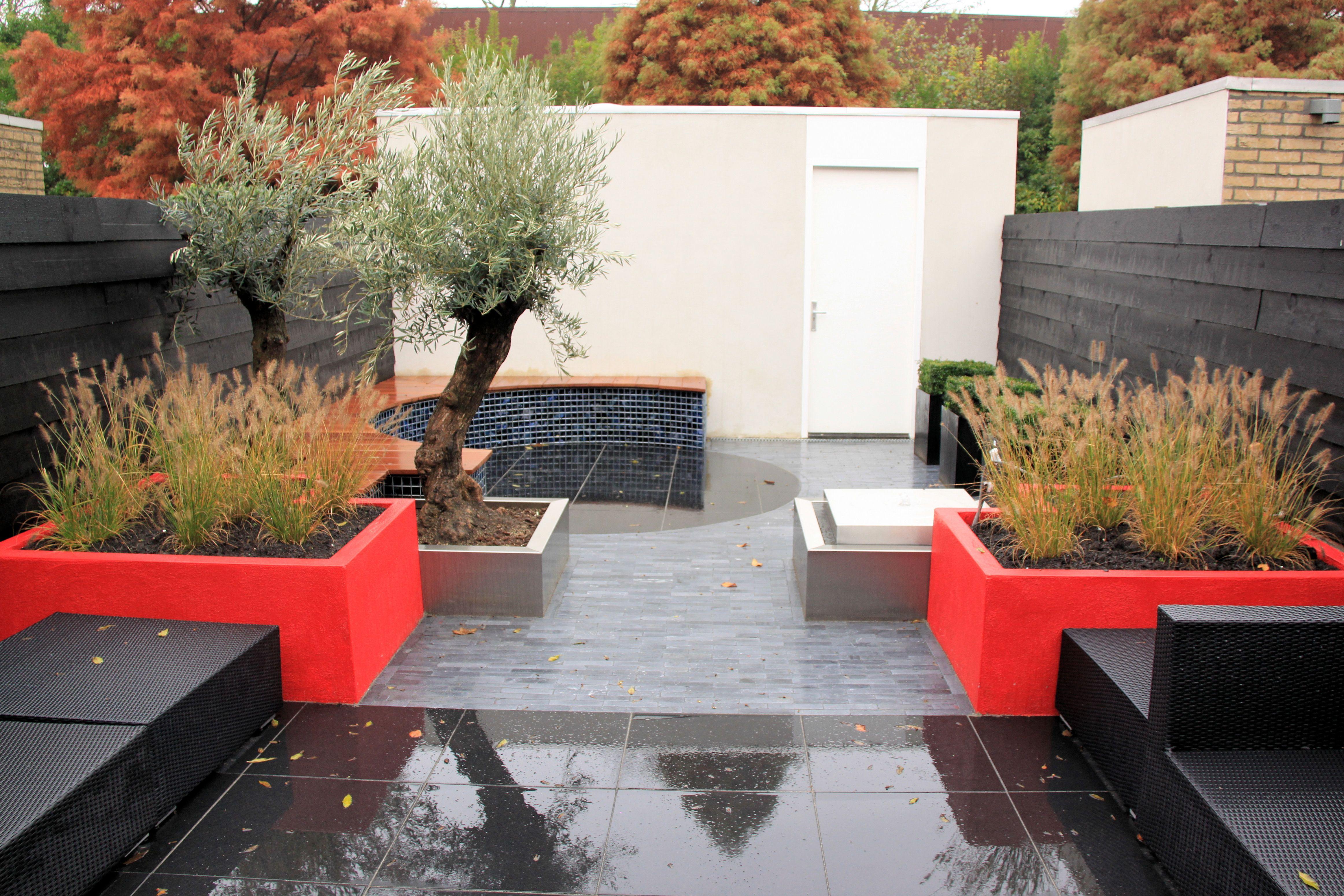 Zeer eigentijdse moderne tuin met sprekende kleuren tuin en