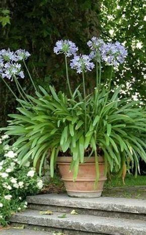 Garten für Faule: Viel Spaß, wenig Arbeit #kräutergartendesign