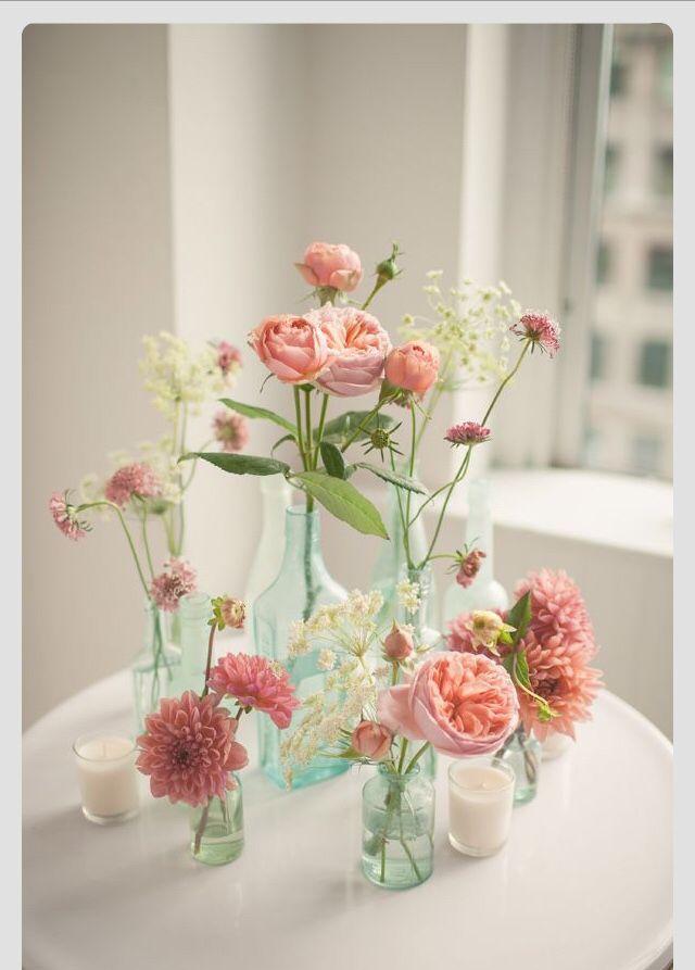 flowering tea - Kiss Me Organics / Tea / Coffee, Tea & Cocoa: Grocery & Gourmet Food
