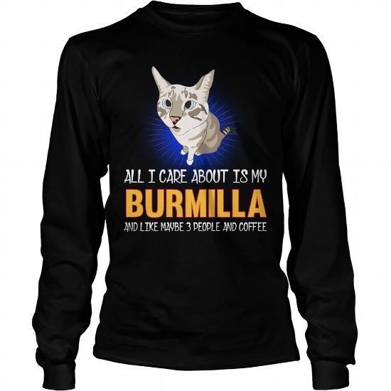 Burmilla All I Care About Is My Burmilla Cat Long Sleeve Tees T-Shirts, Hoodies ==►► Click Order This Shirt NOW!