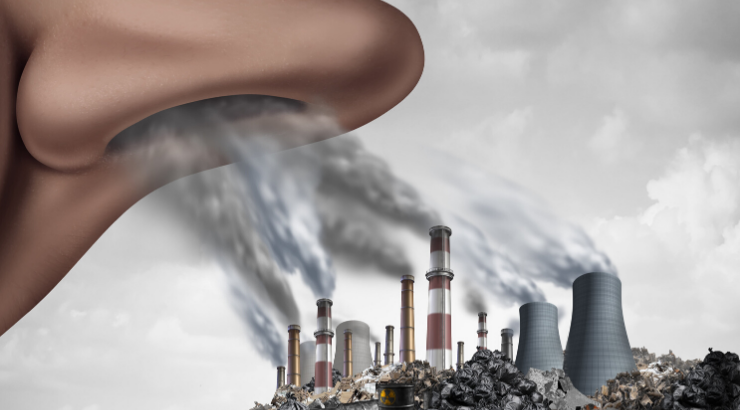 "Yale Study Shows Air Pollution Causes ""Huge"" Reduction in"