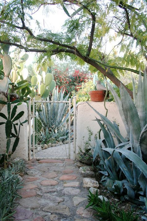 In Arizona, Cultivating a Timeless Look | Design*Sponge