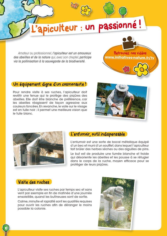 Apiculture Pour Les Enfants Nature Et Abeilles Cambo Les Bains
