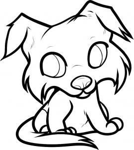 how to draw a border collie puppy reference material to art