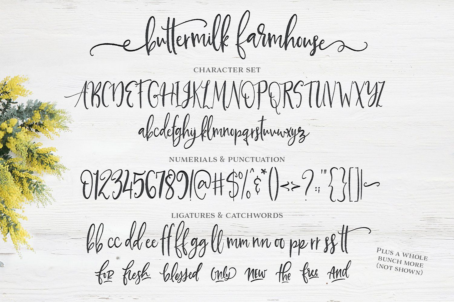 Buttermilk Farmhouse Type Graphics By Callie Hegstrom On Creativemarket
