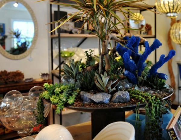 Blumen Garten-modern Sukkulenten indoor arrangement | dizaing ...
