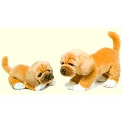 Stuffed Puggle With Images
