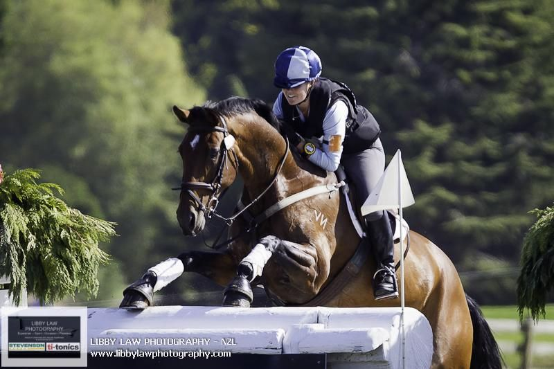 Almost but not quite at the New Zealand Horse of the Year Show, Virginia Thompson and Ashbury Pee Cee in the 2013 HOY CIC3*, Photo by Libby Law
