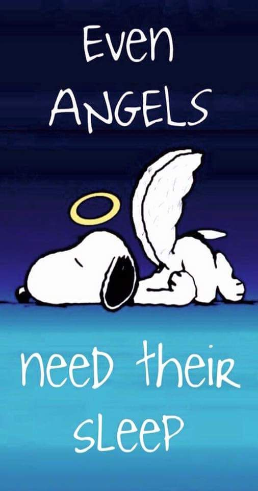 Even angels need their sleep snoopy good night quotes good night images good night wishes good night picture quotes