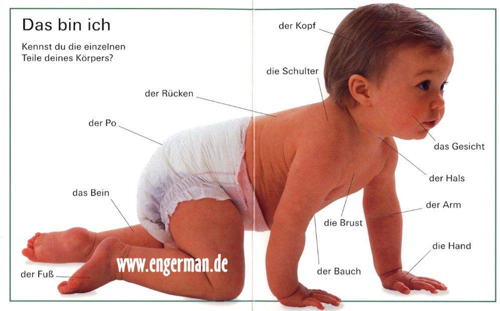 Pin von Sheetal Mehta auf Deutsch lernen wir! | Pinterest | Deutsch ...