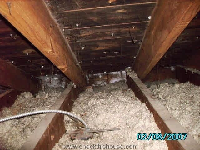 Black attic mold and frost covered nails
