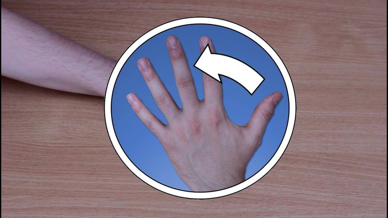 Hippocratv percussion for beginners nursing assessment