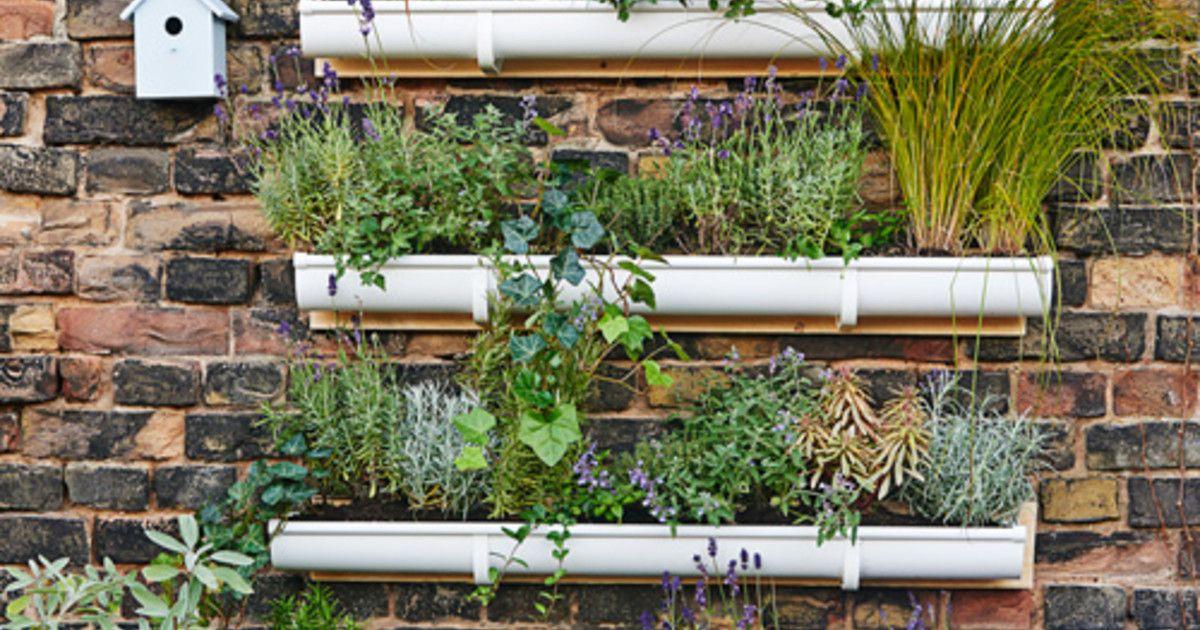 In Einem Vertikalgarten Kann Man Auch Auf Dem Kleinsten Balkon Krauter Oder Salat Anpflanzen Mit Dachrinnen Vertikaler Garten Garten Anlegen Salat Anpflanzen