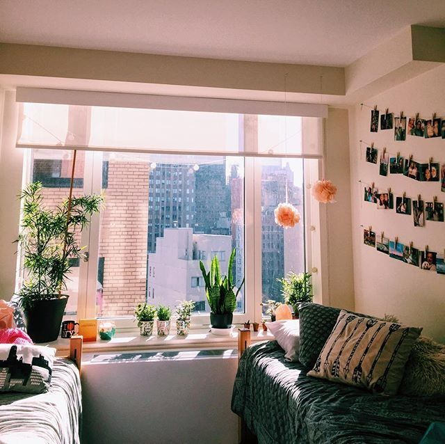 Apartment Decorating Ideas No Matter What Kind Of: Plants And Polaroid Pictures