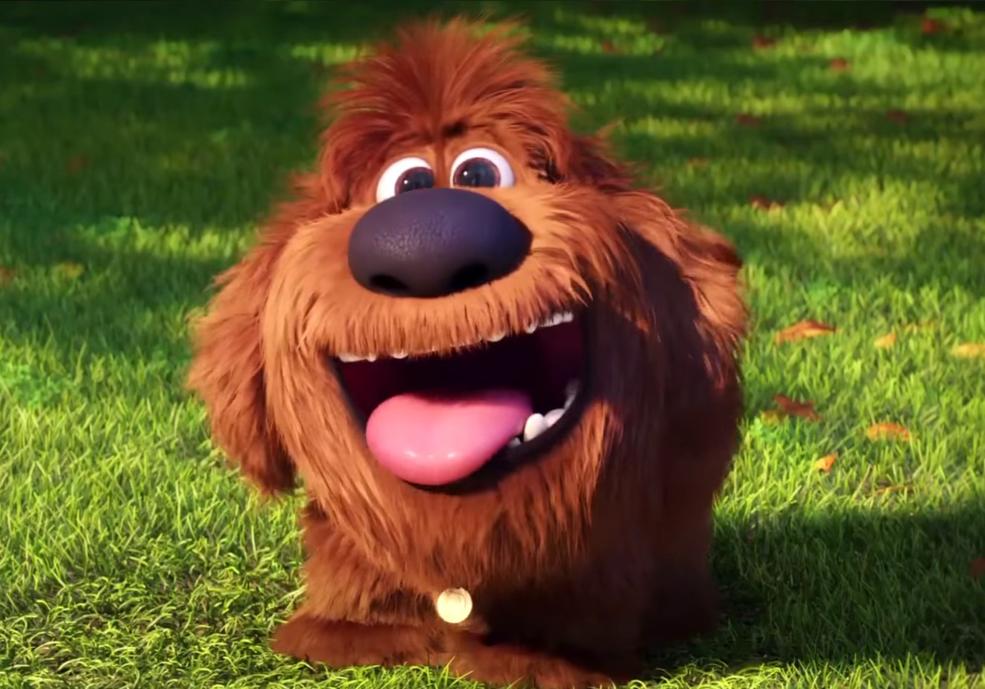 Puppy Duke Png Pets Movie Secret Life Of Pets Pets