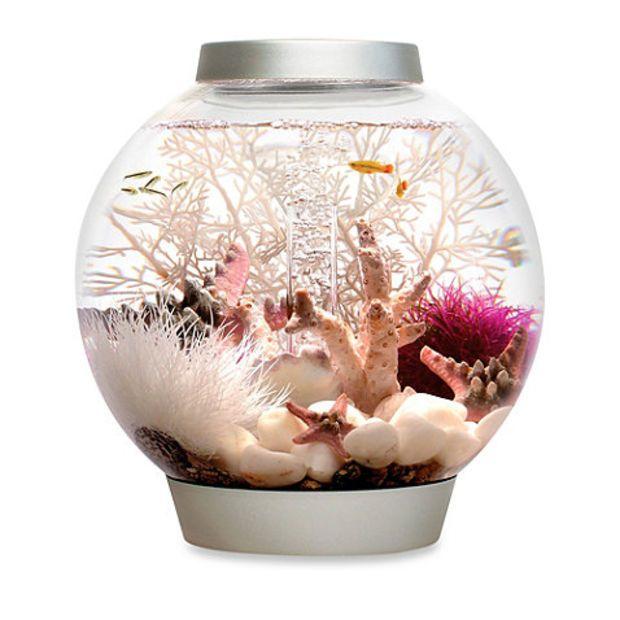 Baby biorb 15 liter classic aquarium starter set in silver for Fish tank set