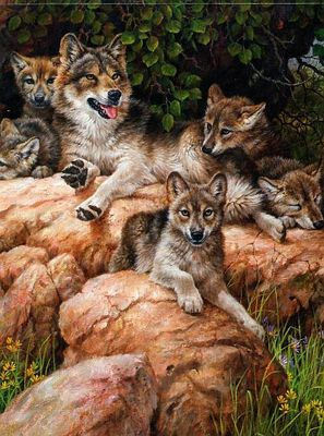 """Larry Fanning """"Wolf and Cubs"""" Wildlife Nature Rocks Pups"""