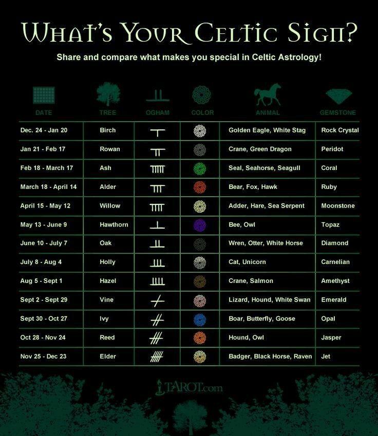Astrology Celtic Symbols and Irish Astrology ☆ Zodiac Signs