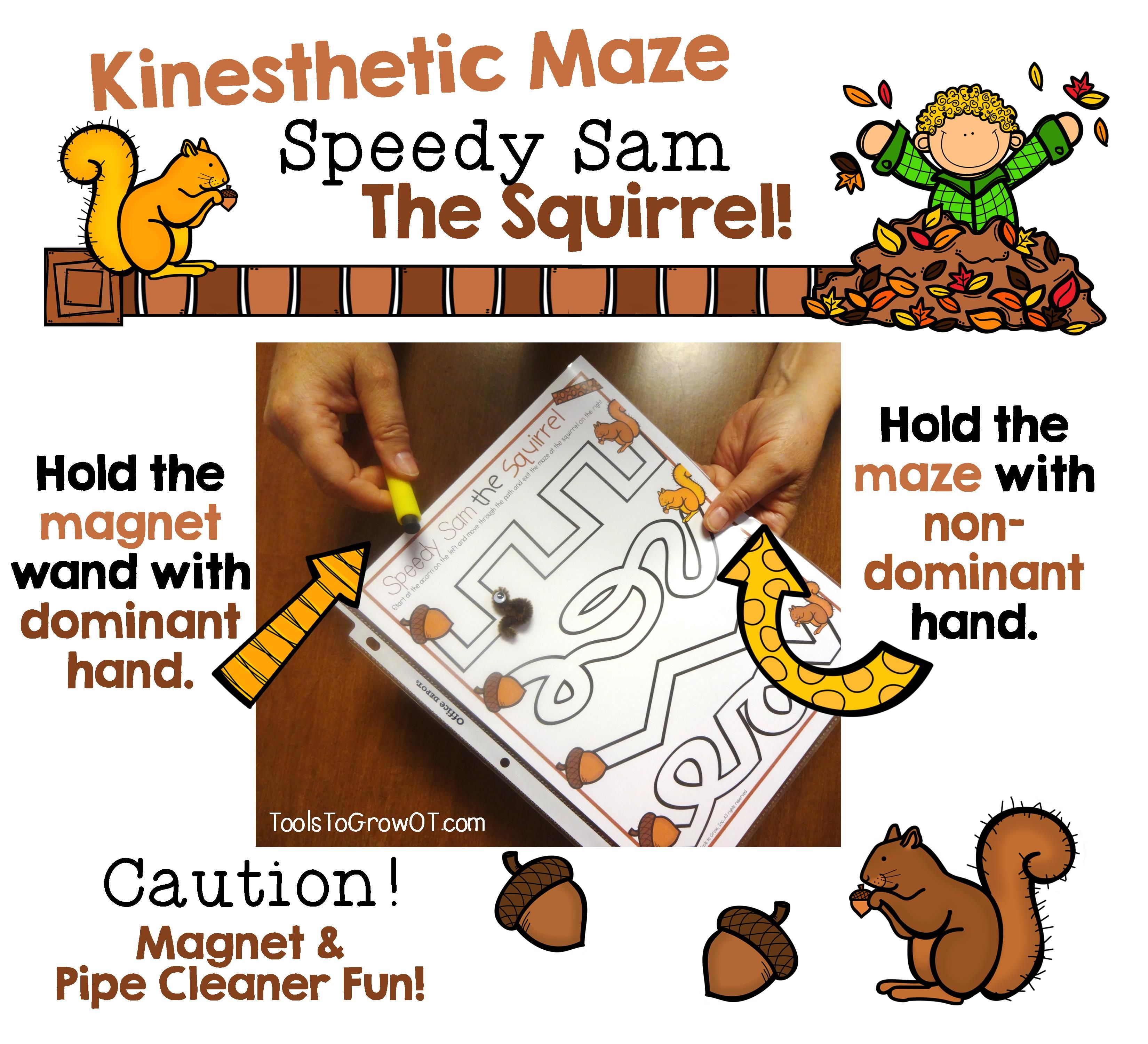 Fall Themed Kinesthetic Maze Speedy Sam The Squirrel Kids And Adults Love This