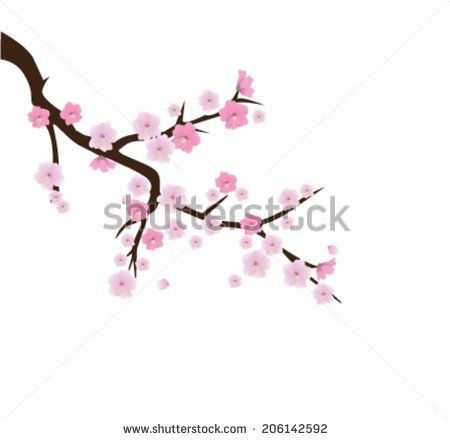 Cherry Blossom Tree Drawing Pencil Google Search