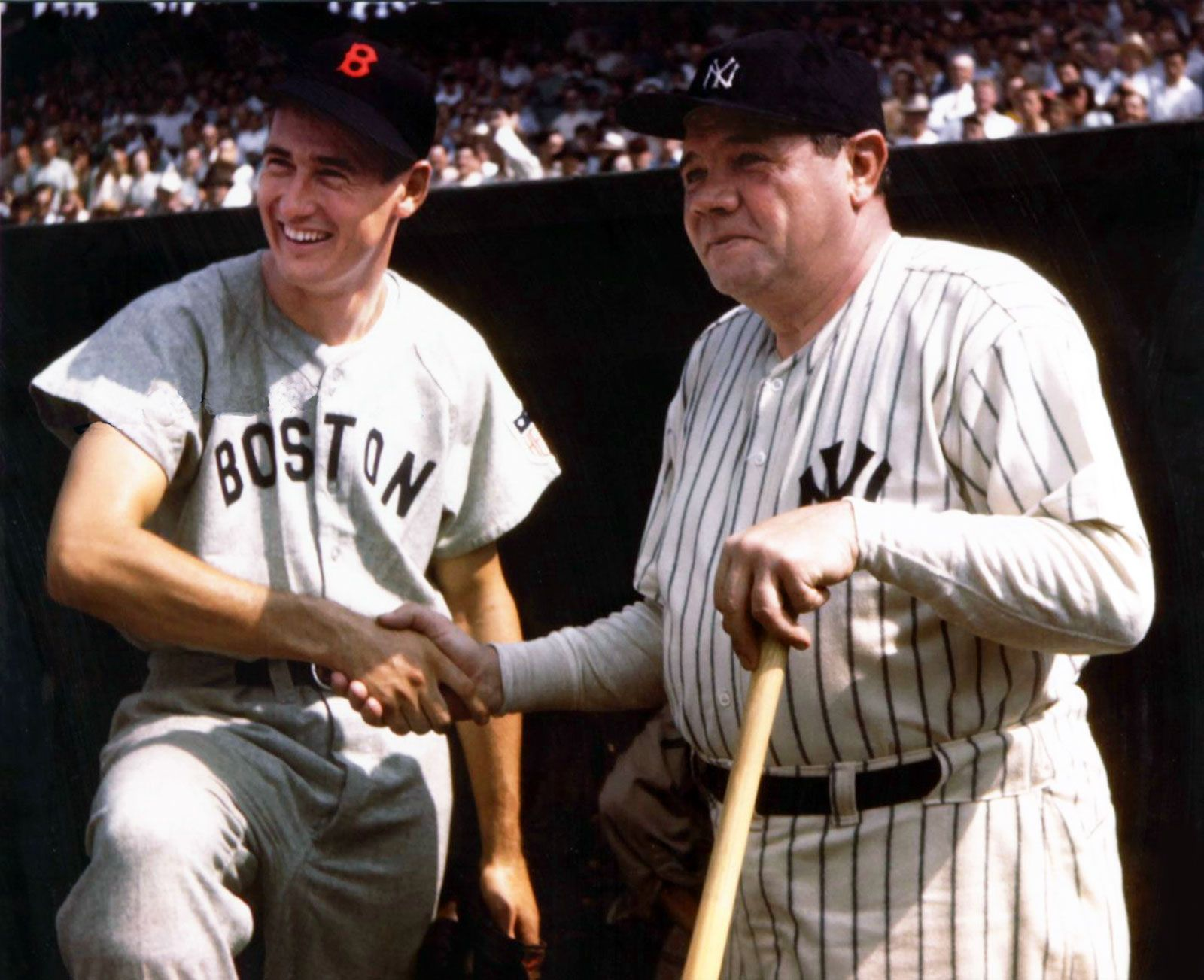 The Great Bambino The Sultan Of Swat The Titan Of Terror The Colossus Of Clout The King Of Crash Babe Ruth Babe Ruth Ted Williams Ted