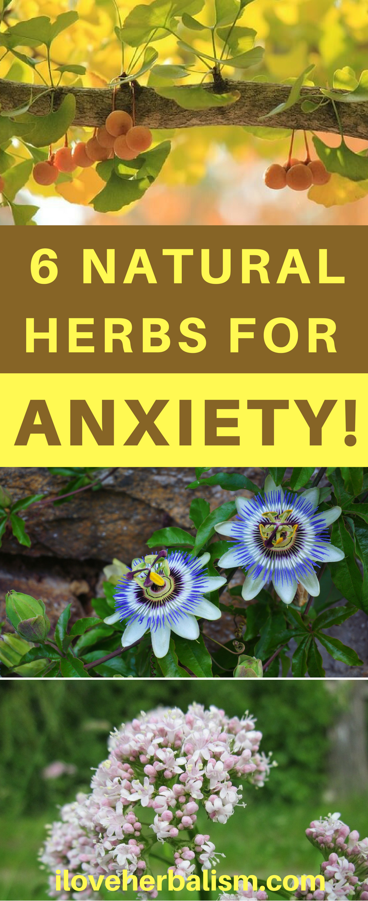 video] simple yet effective remedies for anxiety | ☆ herbal