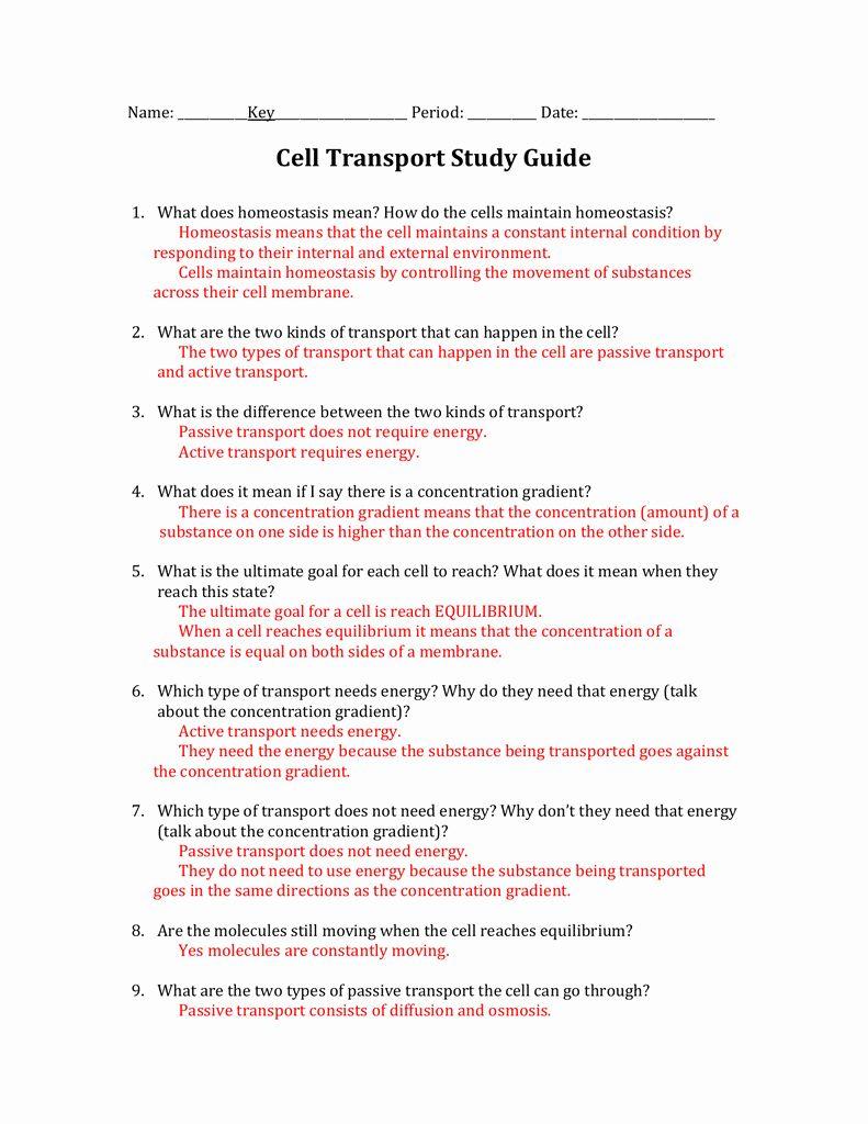 50 Cellular Transport Worksheet Answer Key in 2020